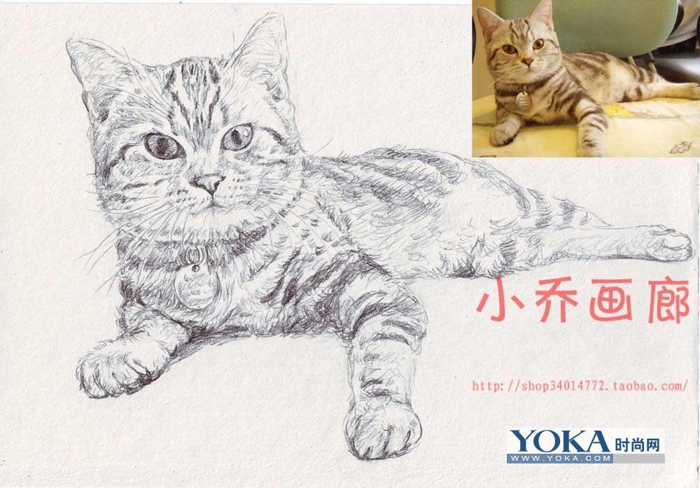 素描小猫小猫素描图片
