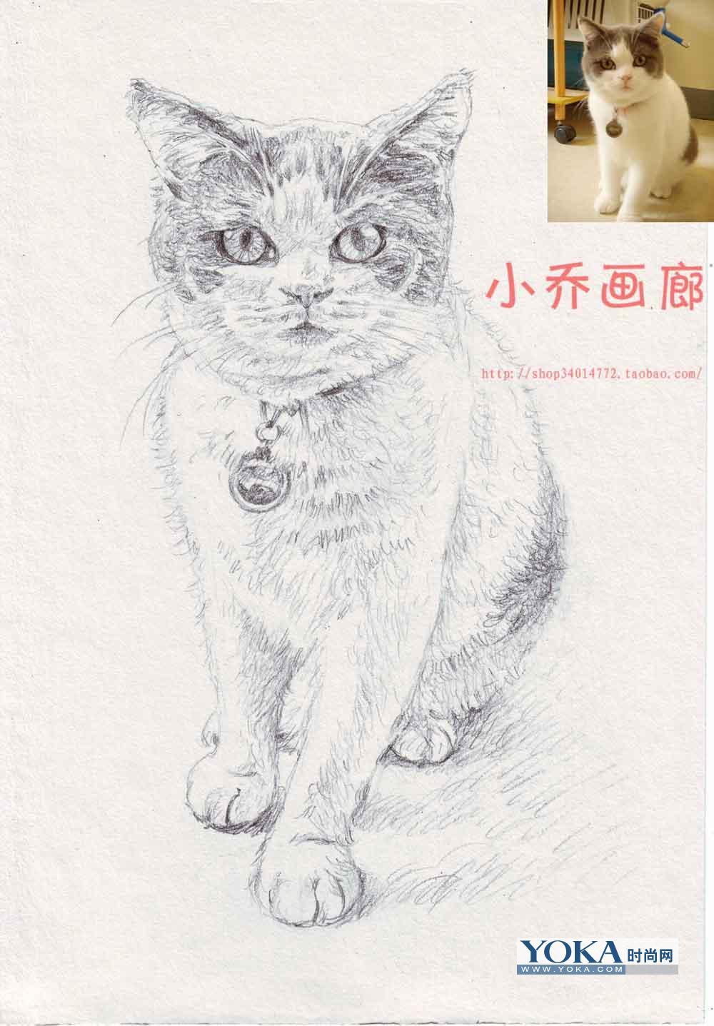 动物铅笔画;