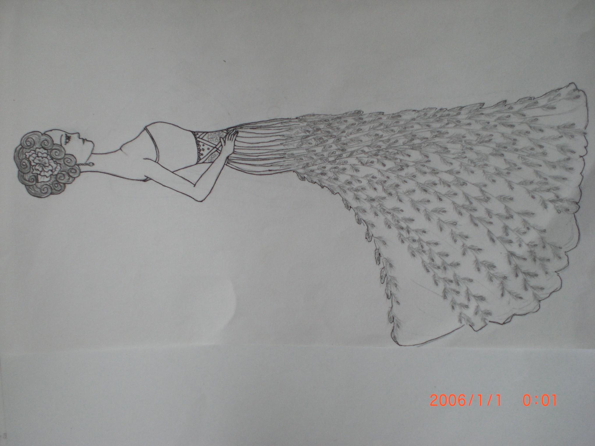 动物素描画法步骤孔雀